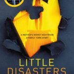 Little Disasters book cover